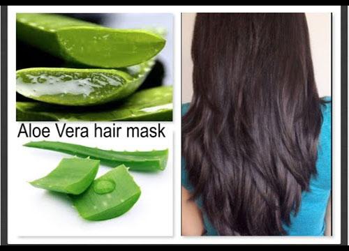 Aloe Vera as a hair mask