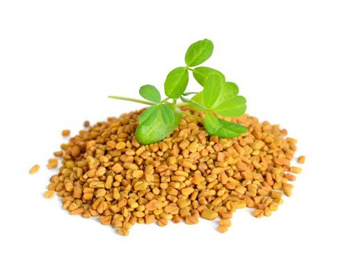 Fenugreek to improve hair damage