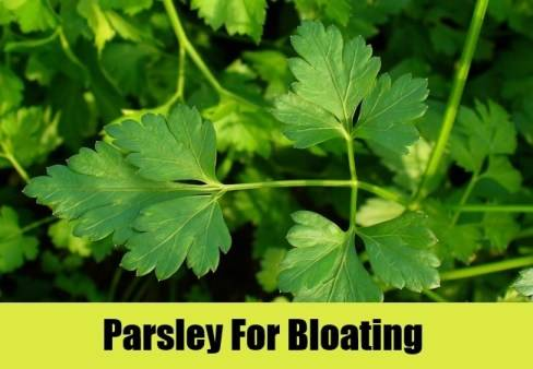 Parsley for bloating